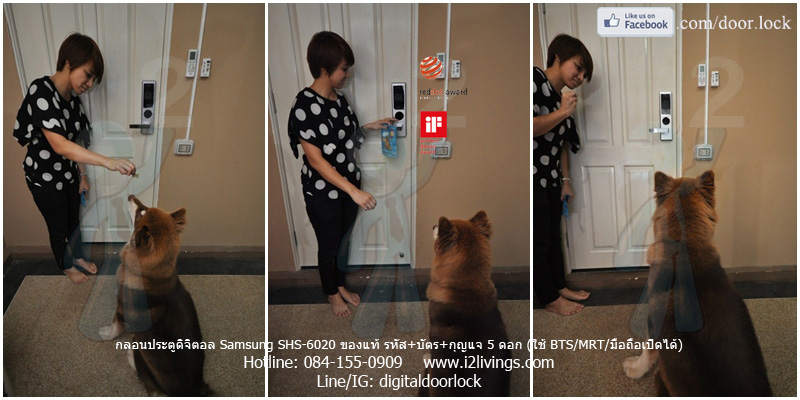 digital door lock  กลอนประตูดิจิตอล Samsung smart doorlock รุ่น SHS-6020 (H635) ของแท้ English version กุญแจ 5 ดอก_หมู่บ้านพฤกษา